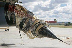 The Truth Behind Aircraft Bird Strikes | Travel Blog ...