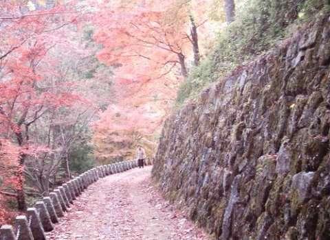 Yoshino Japan