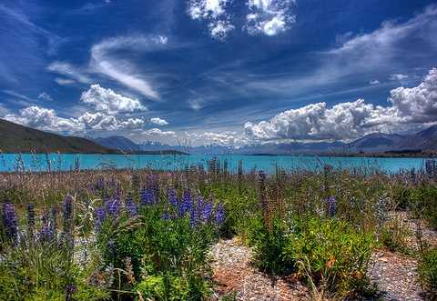 Lake Tekapo New ZealandBIG (480 x 331)