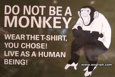 do-not-be-a-monkey (457 x 306)