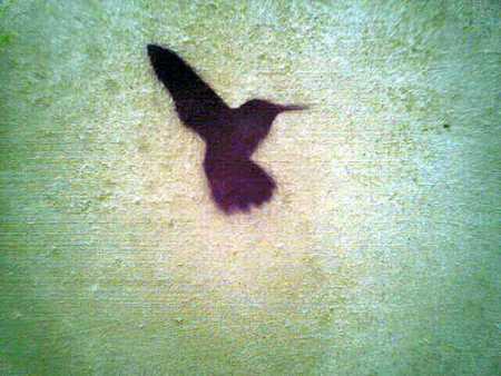 Bird (450 x 338)
