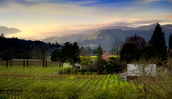 Post image for 9 Spectacular Wine Valleys Across the World