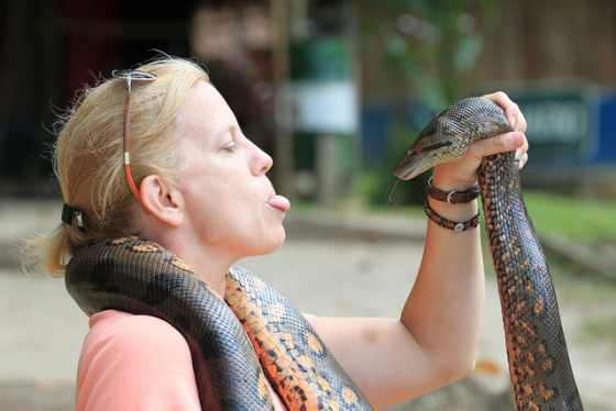 why i fear snakes Fear also comes in a variety of common things such as snakephobia (fear of snakes) or hypsiphobia (fear of heights) but there are uncommon fears as well such as hadephobia (fear of hell) or heliophobia (fear of the sun.